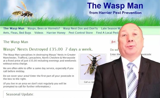 Trafford Borough wasps nests destroyed £45.00 Fixed Price